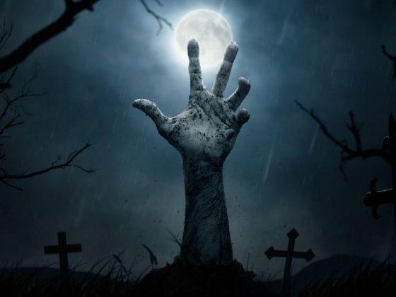 7 canciones para el día de Halloween