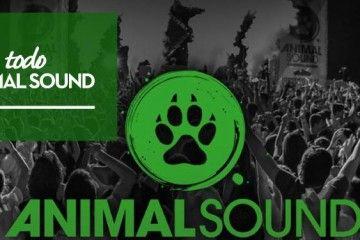 animal-sound-tanda-de-confirmaciones