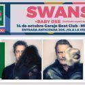 concierto-swans