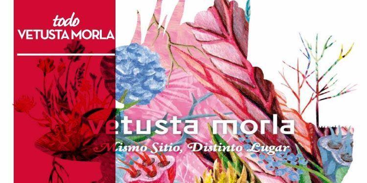 """Reseña disco de Vetusta Morla """"Mismo Sitio, Distinto Lugar"""""""