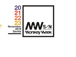 ¿Qué nos encanta del Monkey Week?